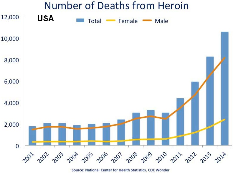 heroin-addiction-rates
